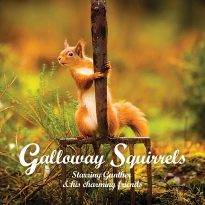 Galloway Squirrels